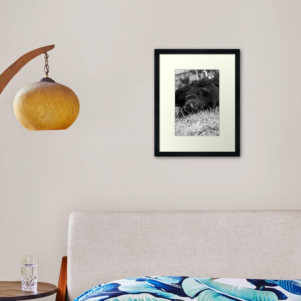 Gentle Soul Framed Art Print
