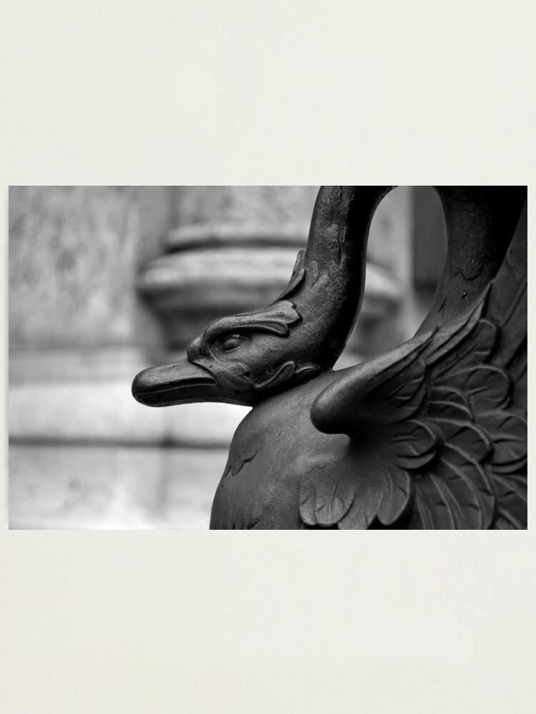 Alternate view of Cranky Viennese Swan Photographic Print