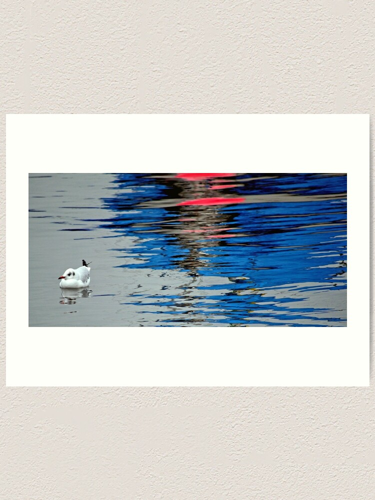 Alternate view of Gull with Reflections Art Print