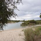 Bush track & Fox Lake, 'Robe' Limestone Coast. Sth. Aust. by Rita Blom
