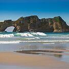 Archway Islands, New Zealand by Kathy Reid