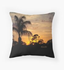 Fast Moving Clouds at Sunset Throw Pillow