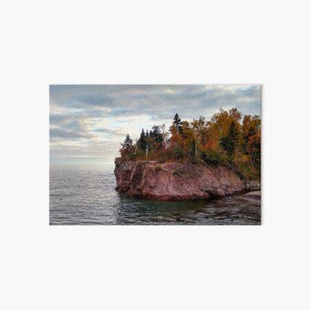 Autumn on the North Shore Art Board Print