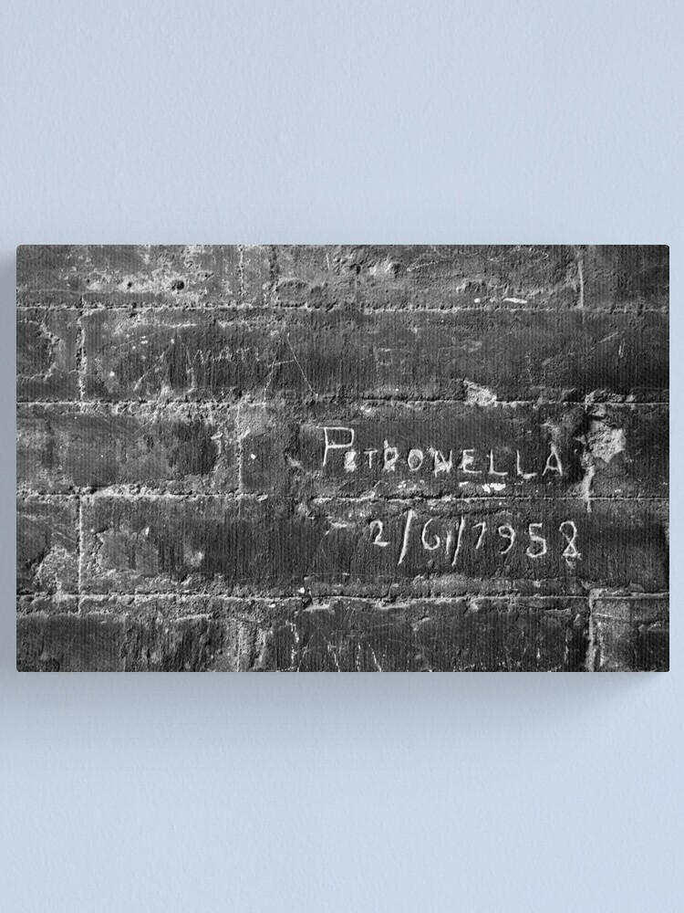 Alternate view of When Petronella Went to Rome Canvas Print