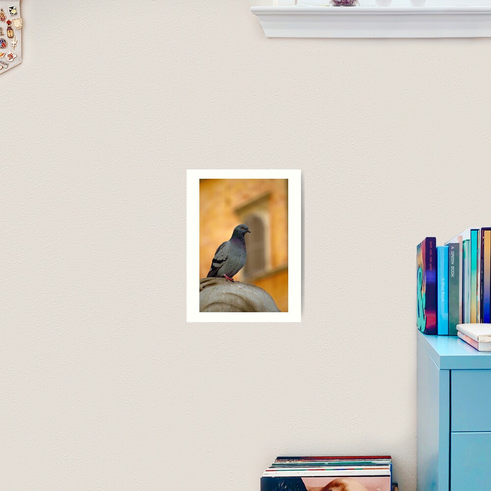 Posing Pigeon Art Print