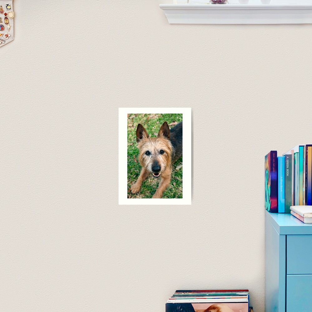 The Happy Terrier Art Print