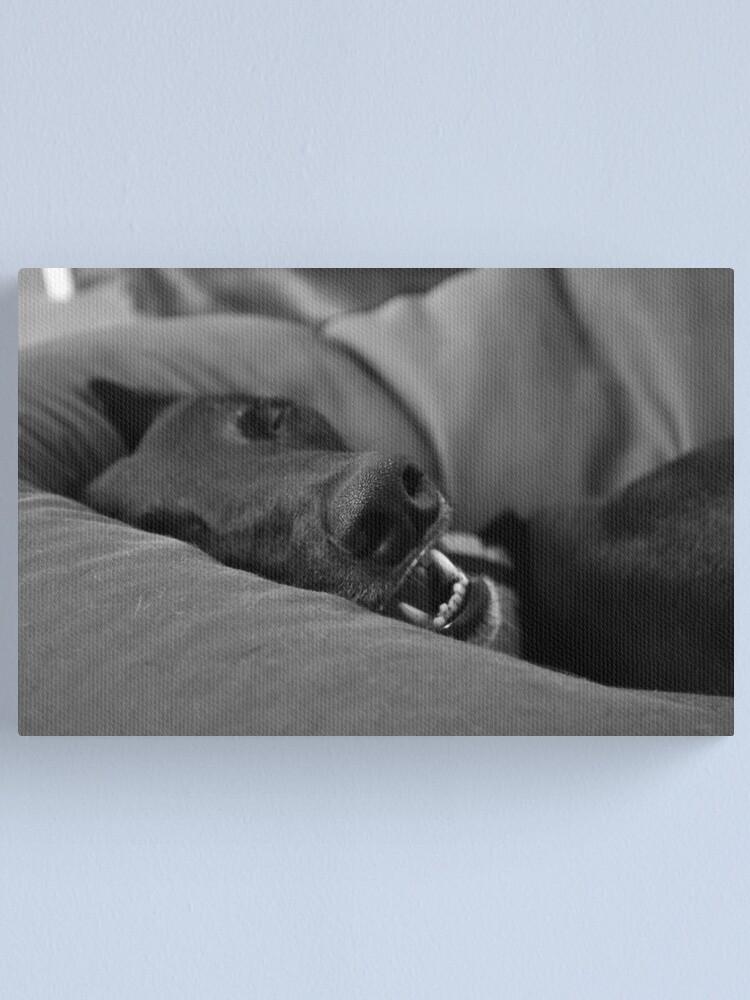 Alternate view of Blissful Sleep Canvas Print