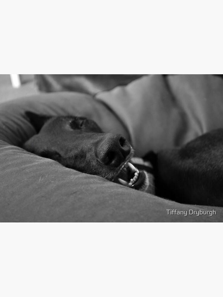 Blissful Sleep by Tiffany