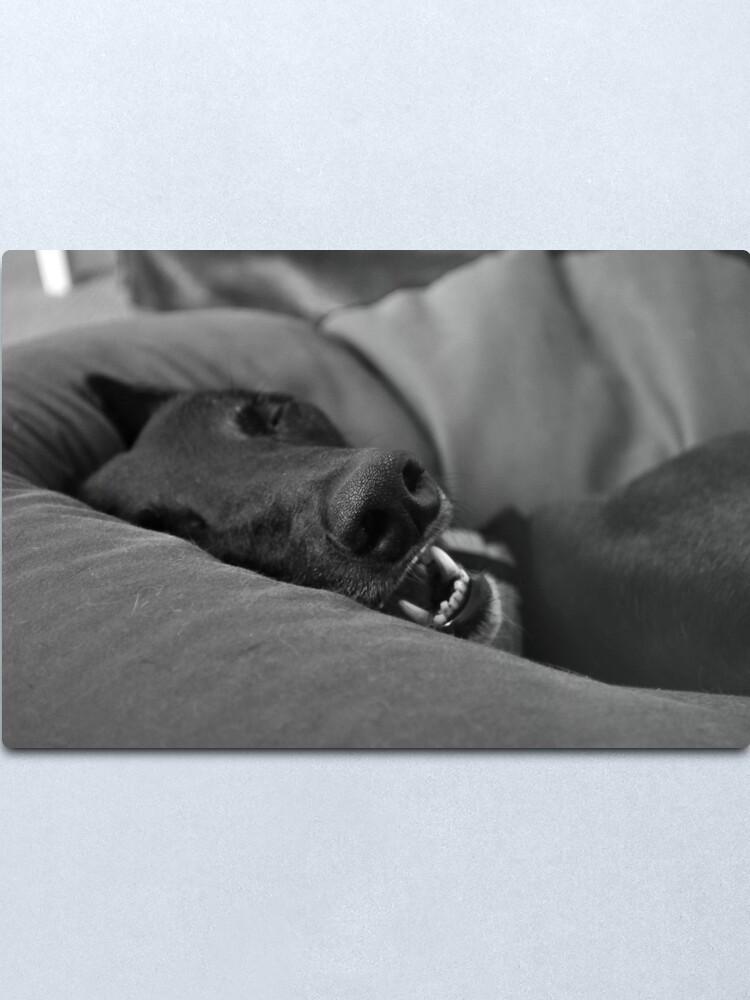 Alternate view of Blissful Sleep Metal Print