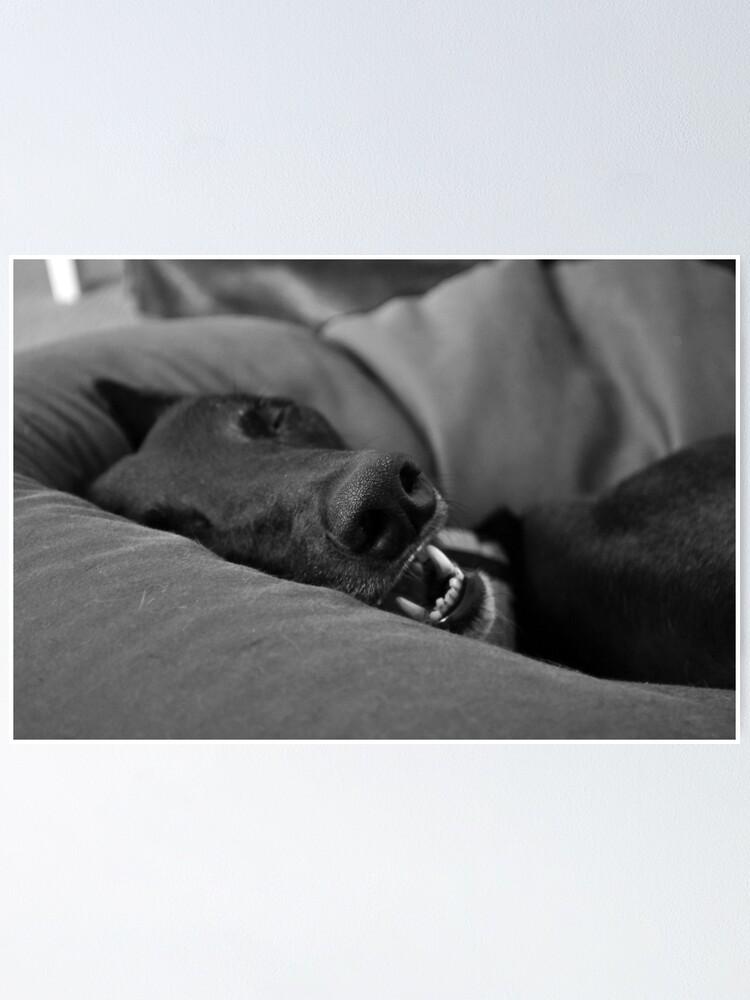Alternate view of Blissful Sleep Poster