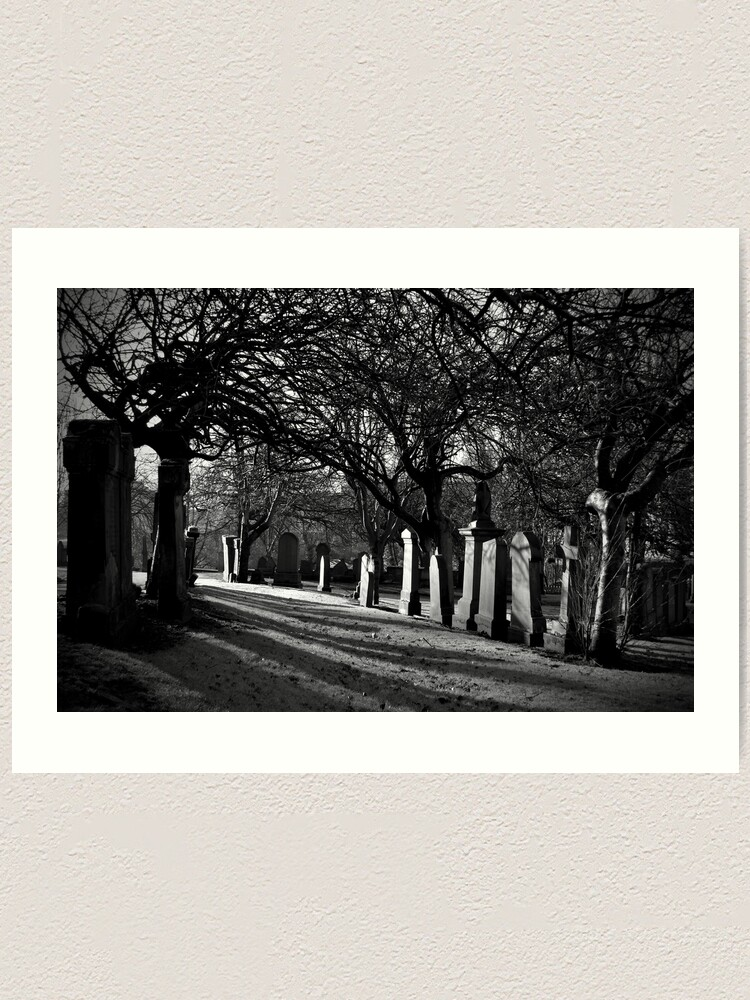 Alternate view of Early Morning Shadows Art Print