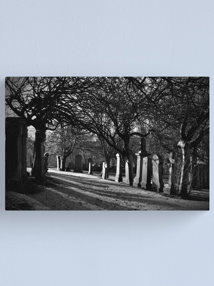Alternate view of Early Morning Shadows Canvas Print