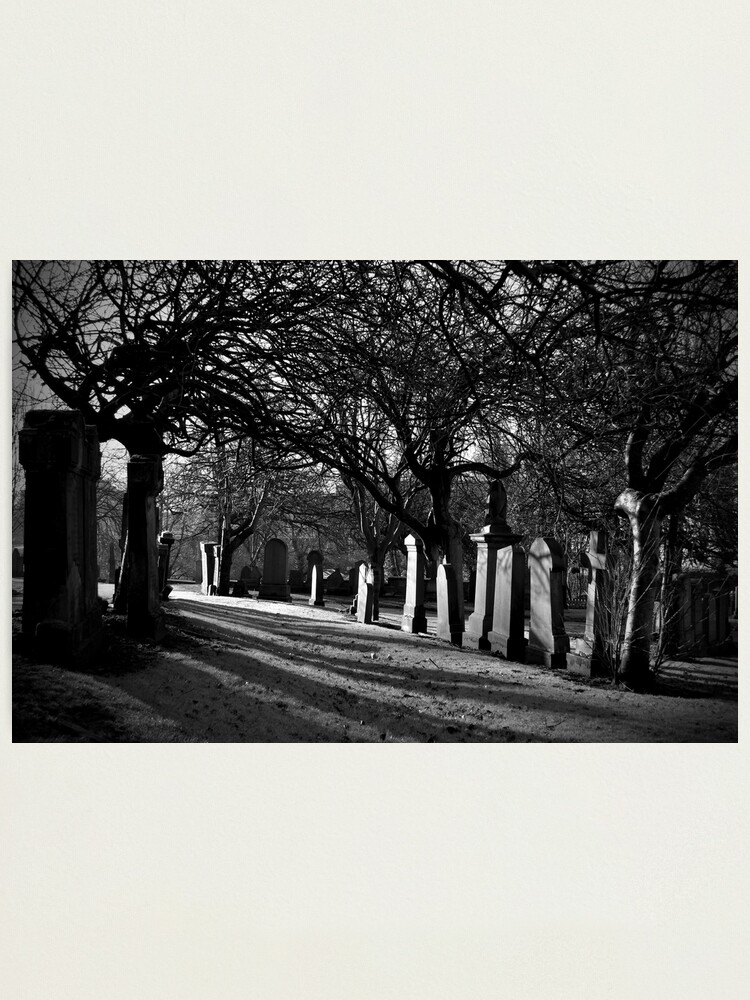 Alternate view of Early Morning Shadows Photographic Print