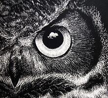 Owl Eye by Lauren Rakes