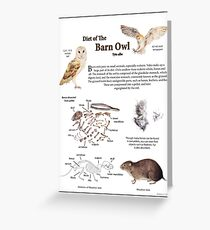 Diet of the Barn Owl Greeting Card