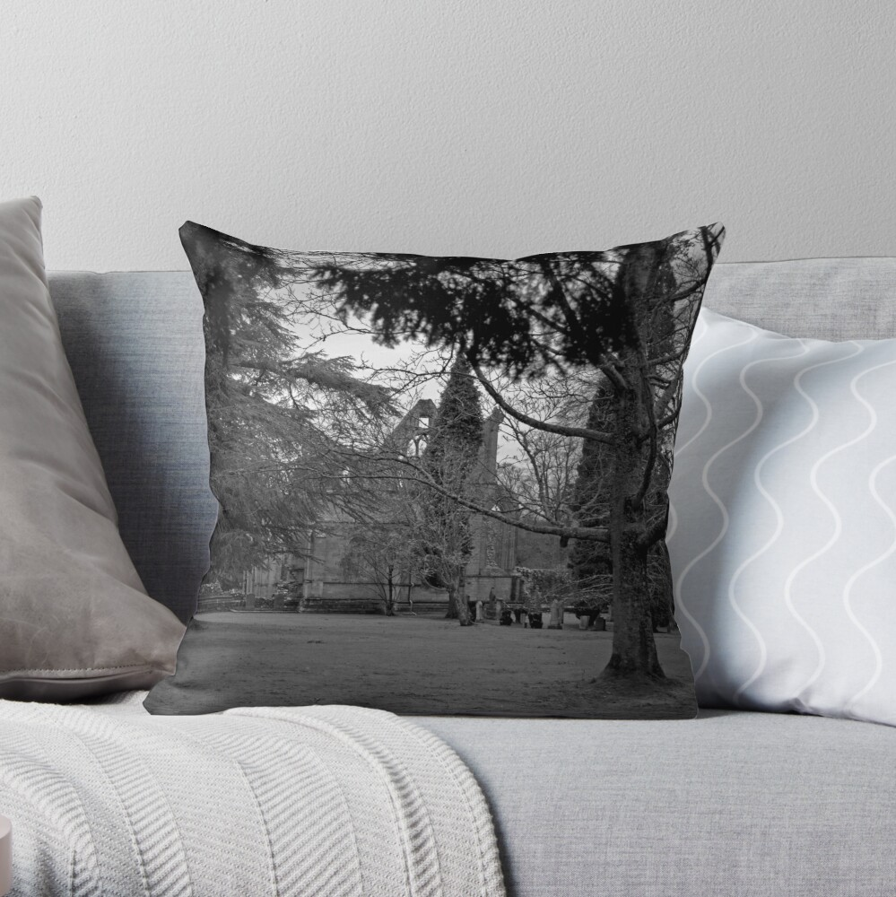 A Moody Dryburgh Throw Pillow