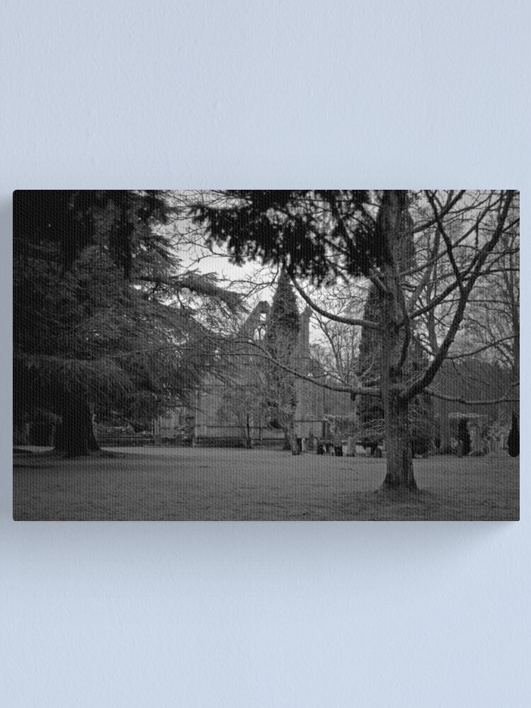 Alternate view of A Moody Dryburgh Canvas Print