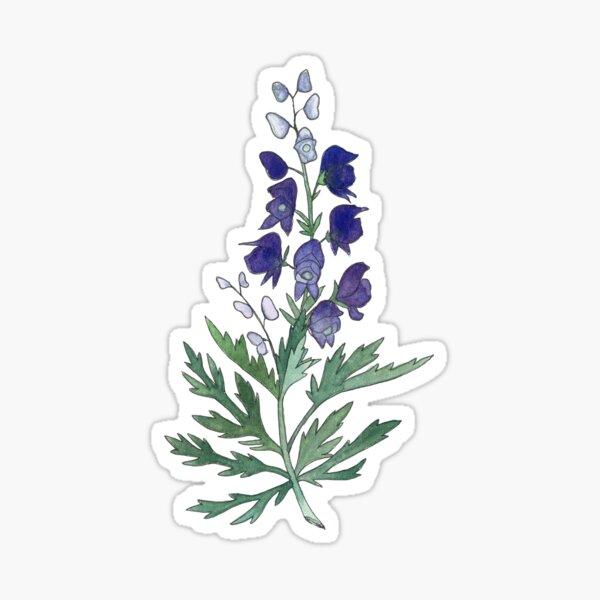Wolfsbane Watercolor Flower Drawing Sticker