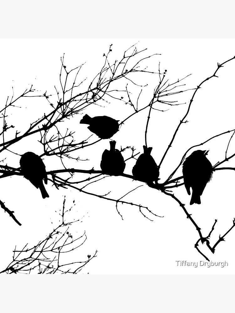 Sparrow Line Up by Tiffany