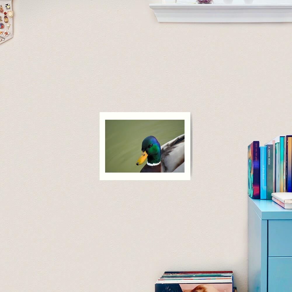 Hello Ducky! Art Print
