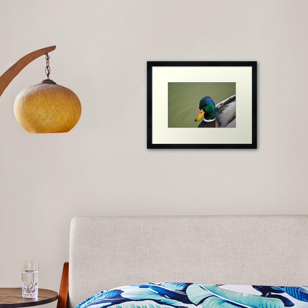 Hello Ducky! Framed Art Print
