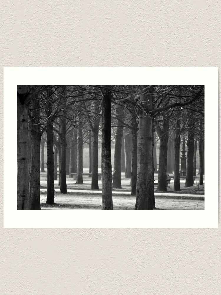 Alternate view of Winter Garden Art Print