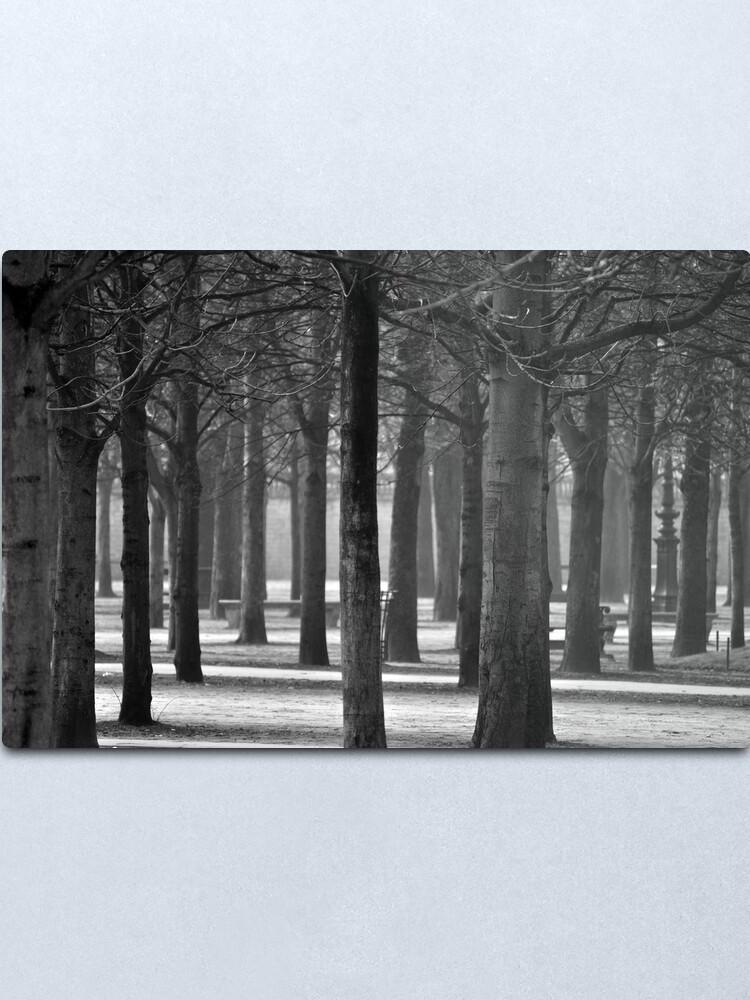 Alternate view of Winter Garden Metal Print