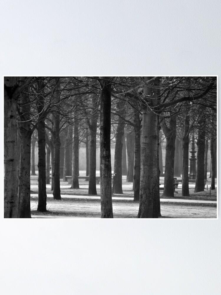 Alternate view of Winter Garden Poster