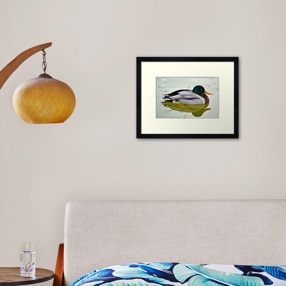 Sleeping Peacefully Framed Art Print