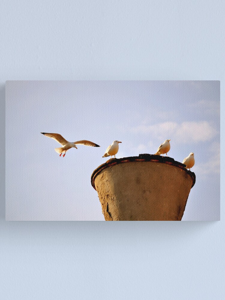 Alternate view of Coming in for a Landing Canvas Print