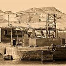 Lake Nasser Ancient and Modern by Nigel Fletcher-Jones