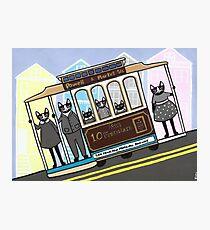 San Francisco Trolley Cats Photographic Print