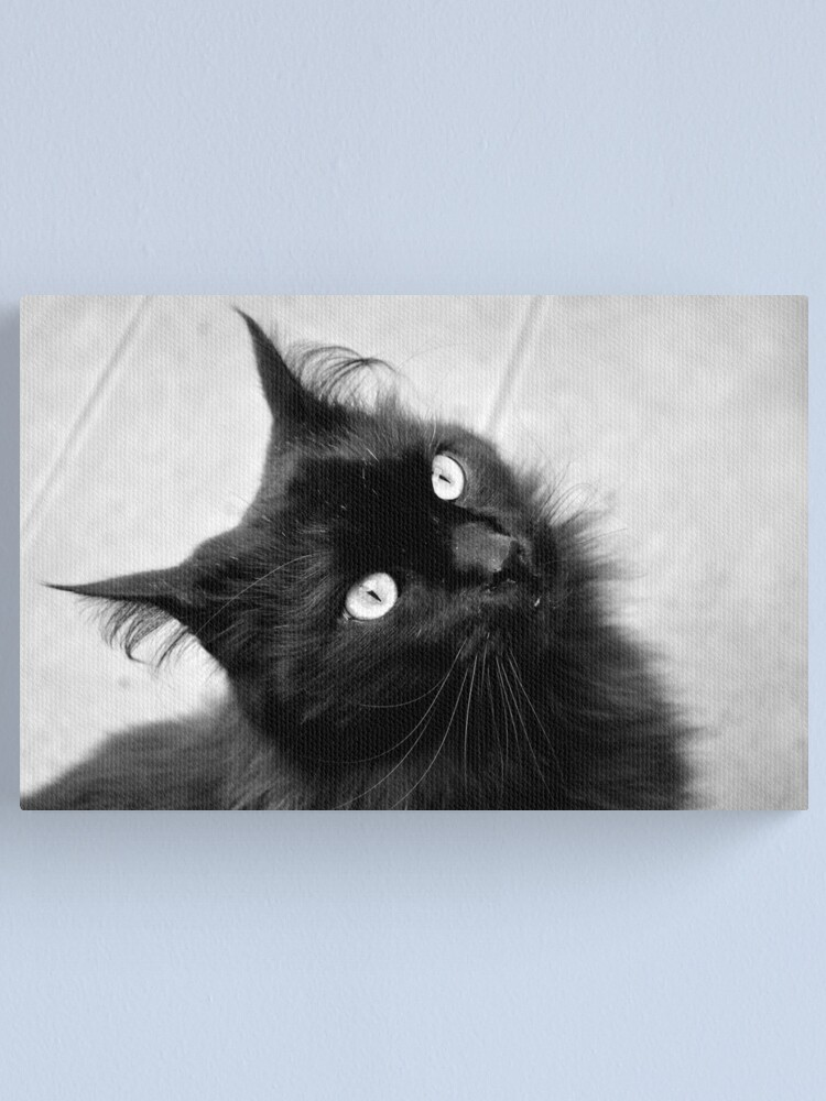 Alternate view of Crazy Hair Canvas Print