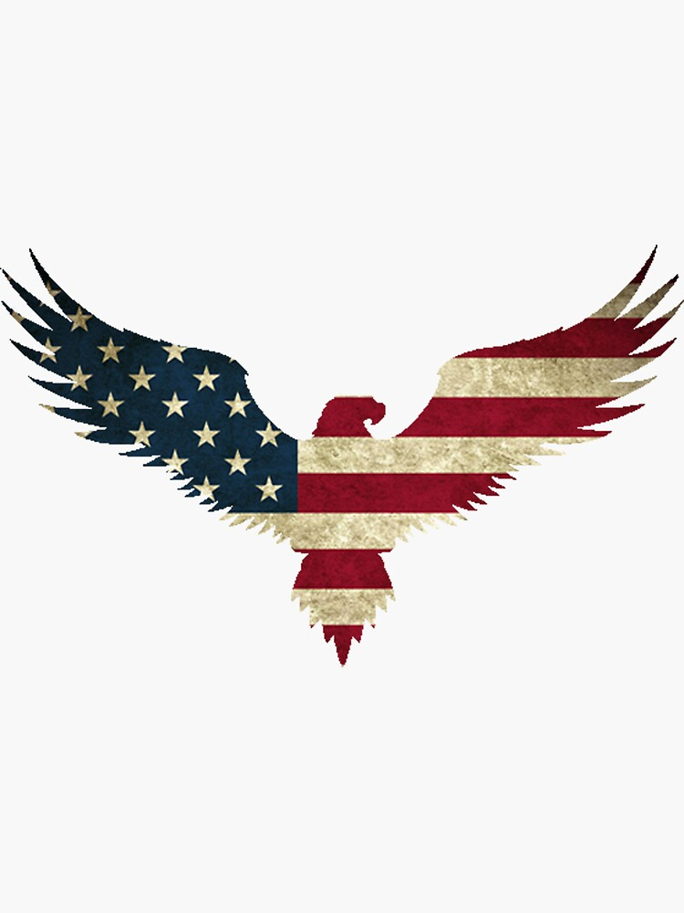 Bald Eagle- America by Nathan26