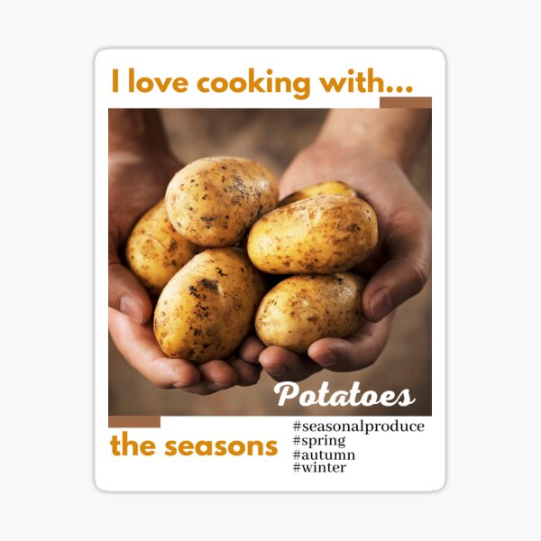 Copy of Cooking with the seasons - Cucumber Sticker
