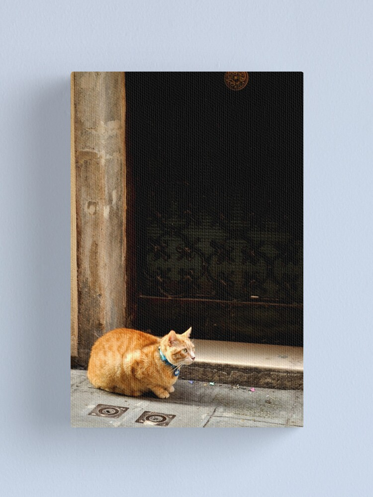 Alternate view of I can wait ... Canvas Print