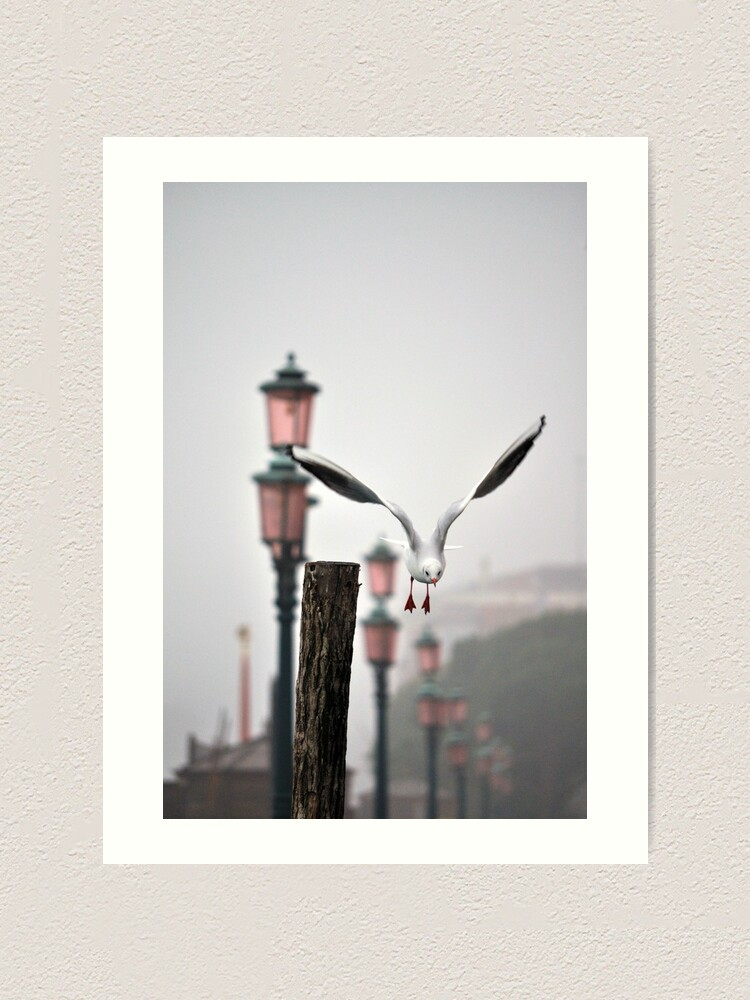 Alternate view of And away we go... Art Print