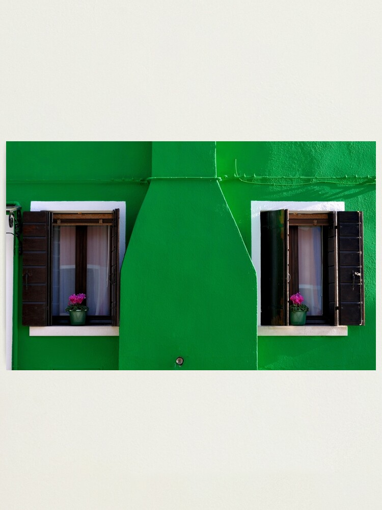 Alternate view of A Whole Lot of Green Photographic Print
