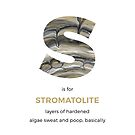 S is for Stromatolite by Franz Anthony
