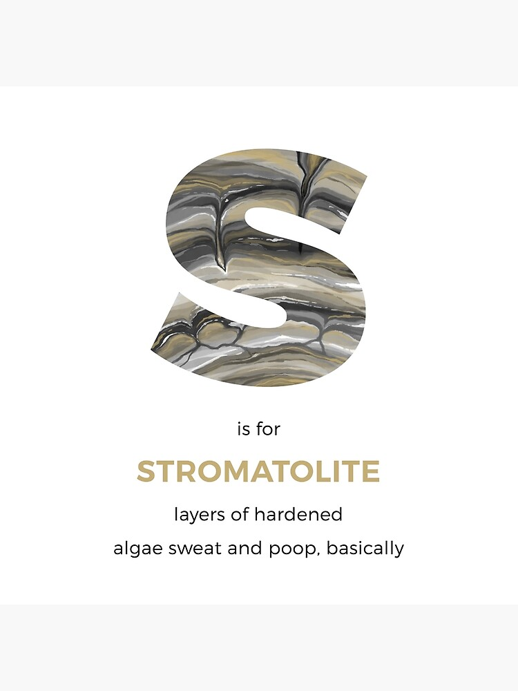 S is for Stromatolite by franzanth