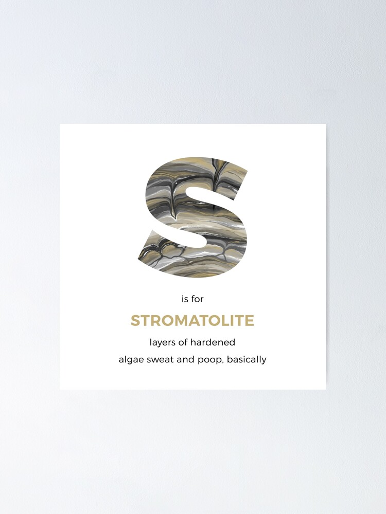 Alternate view of S is for Stromatolite Poster