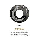 O is for Ottoia by Franz Anthony