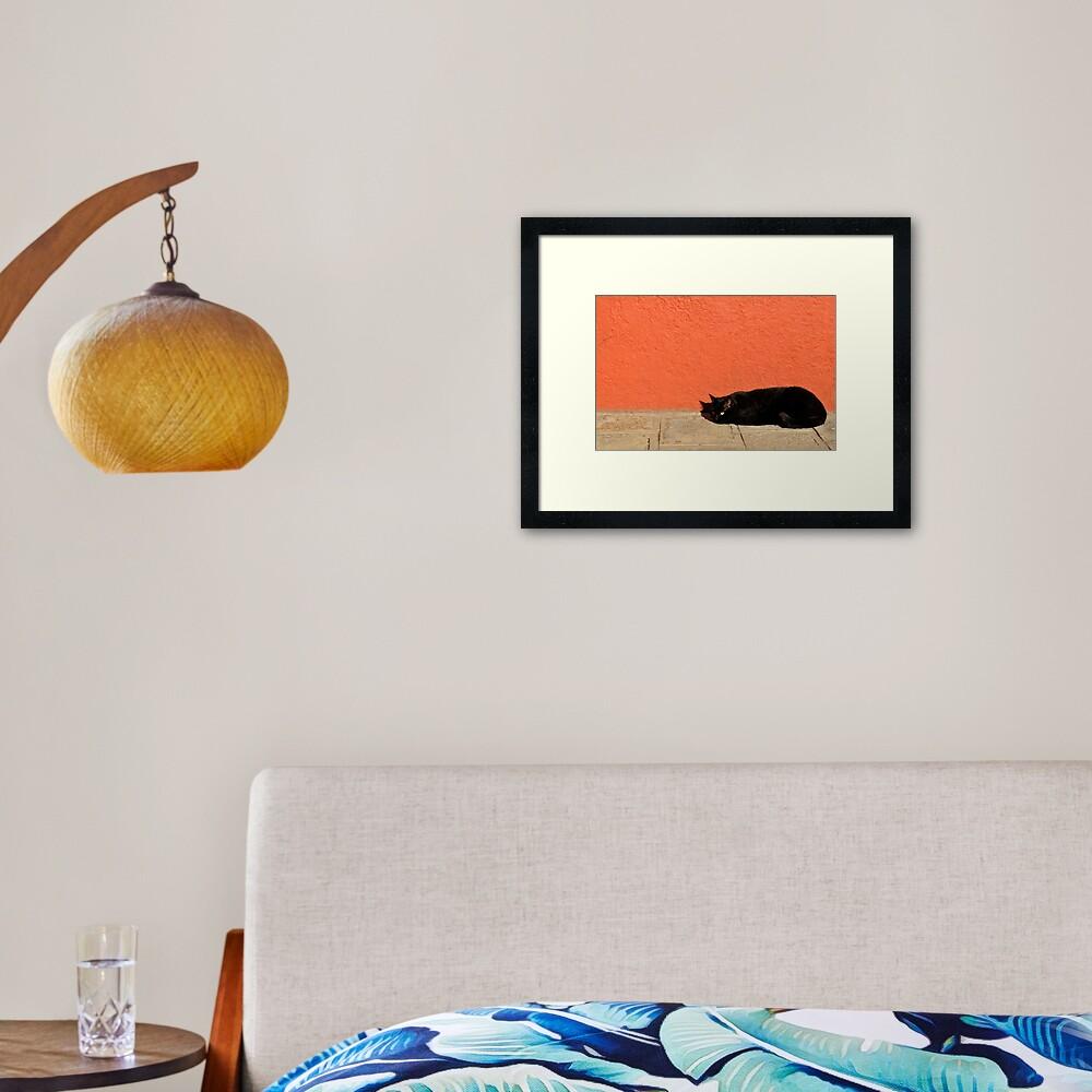 Black Cat Red Wall Framed Art Print