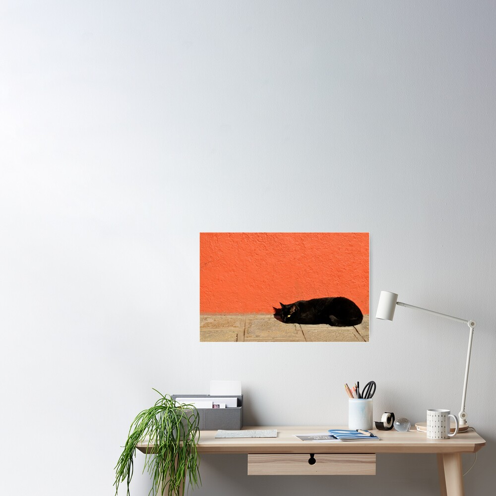 Black Cat Red Wall Poster