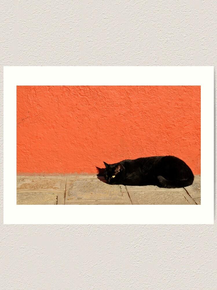 Alternate view of Black Cat Red Wall Art Print
