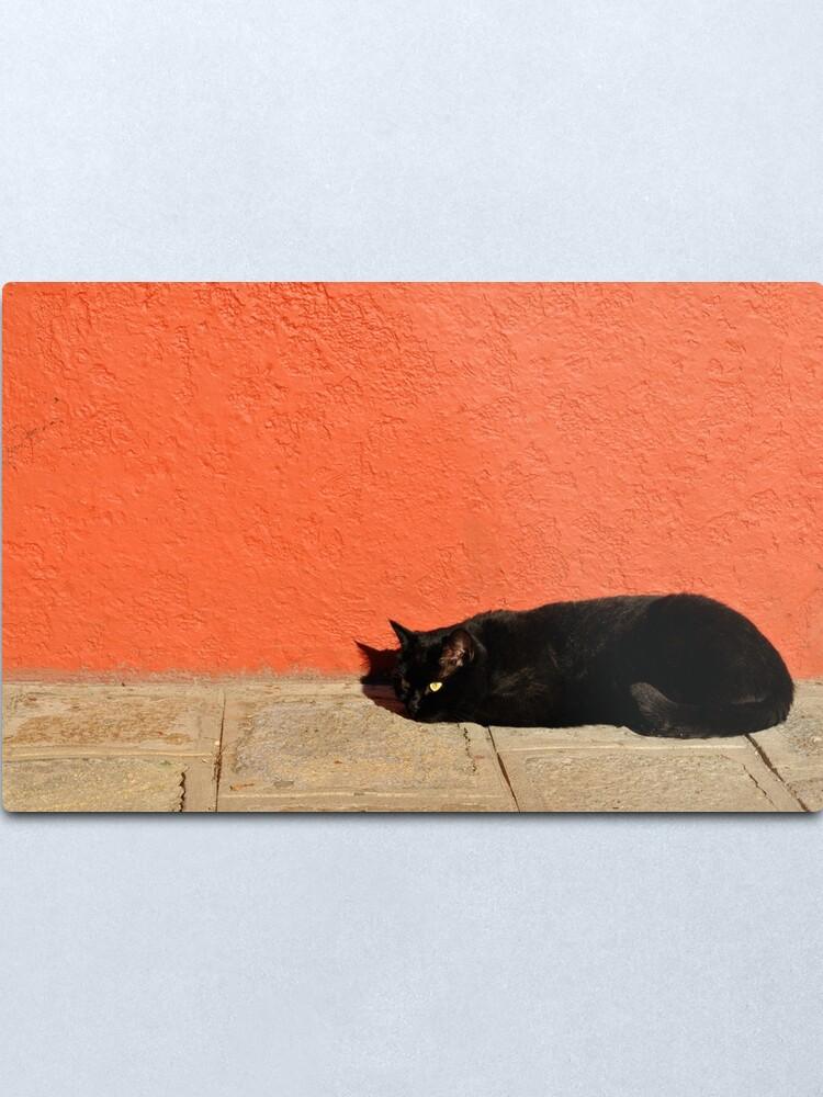 Alternate view of Black Cat Red Wall Metal Print