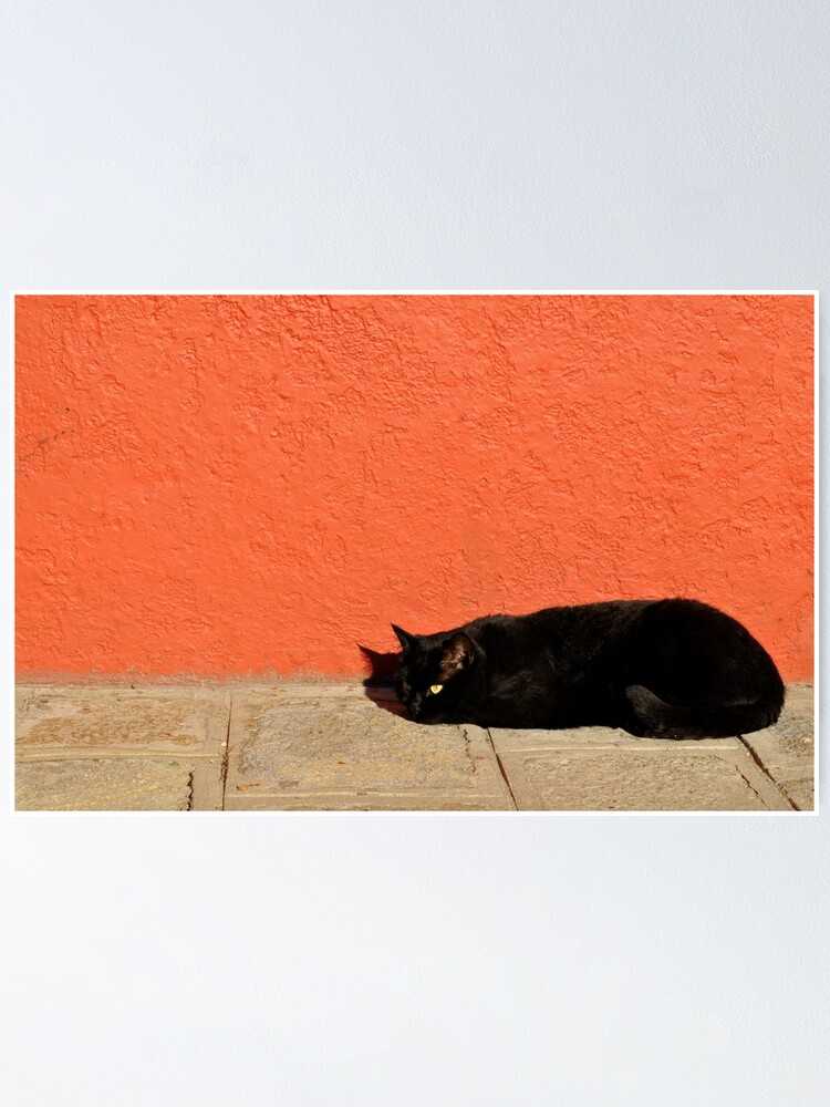 Alternate view of Black Cat Red Wall Poster
