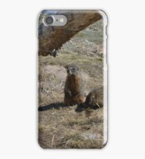 Marmots on the Tundra iPhone Case/Skin
