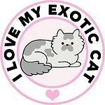 Exotic Cat Lover T-Shirts