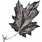 The Life Of A Leaf Poem by pinkyjainpan